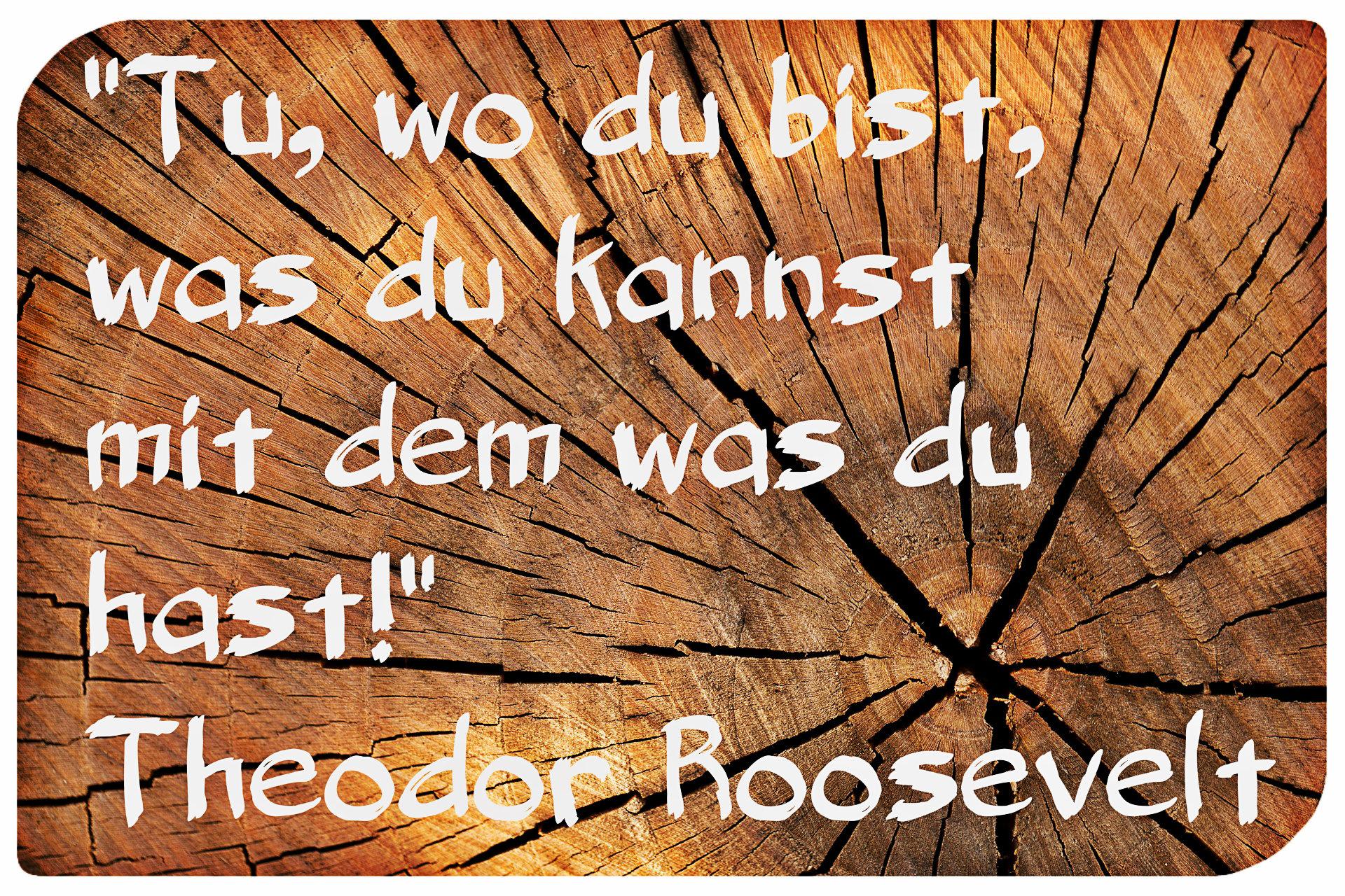 Roosevelt-Zitat