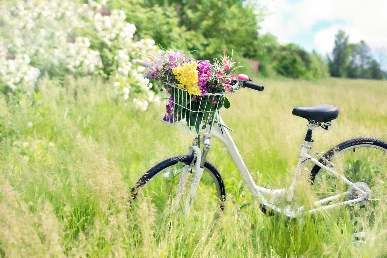bicycle-788733_1280